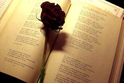поэзия